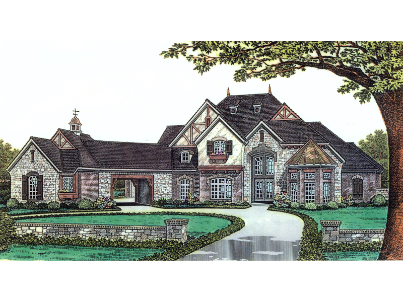 Felsberg Luxury European Home Plan 036d 0196 House Plans