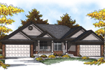 Country Style Multi-Family Design