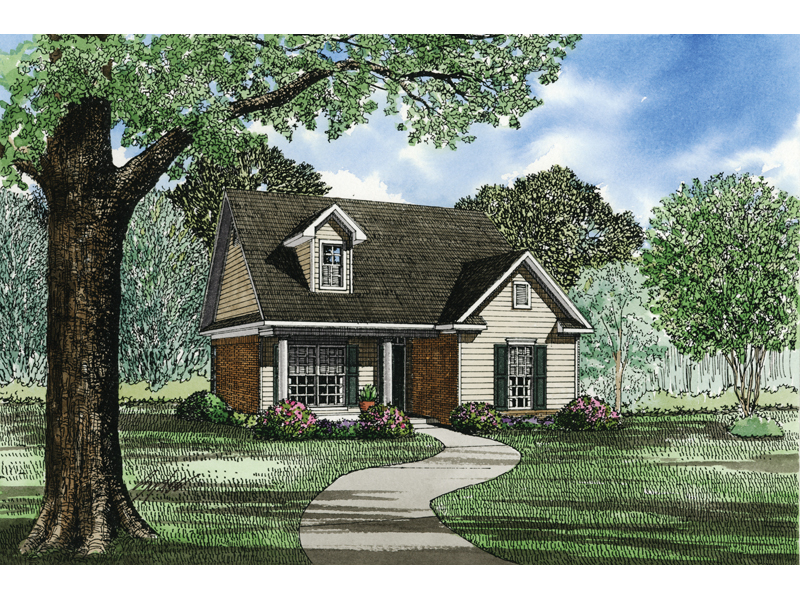 Cabin & Cottage House Plan Front Image of House - 055D-0019 | House Plans and More