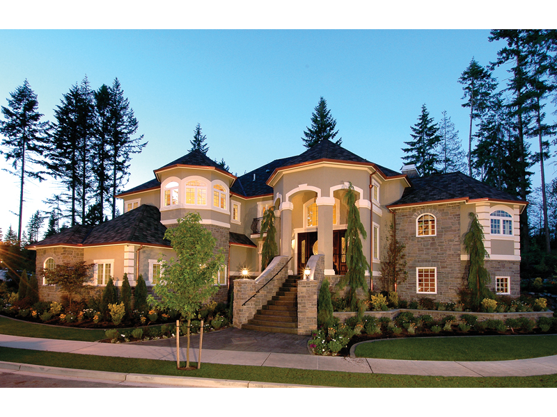 Emerald Ridge Luxury Home Plan 071S-0051 | House Plans and More