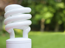 energy efficient style light bulb